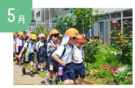 5月:こいのぼり集会、保育参観、春の遠足、交通安全教室